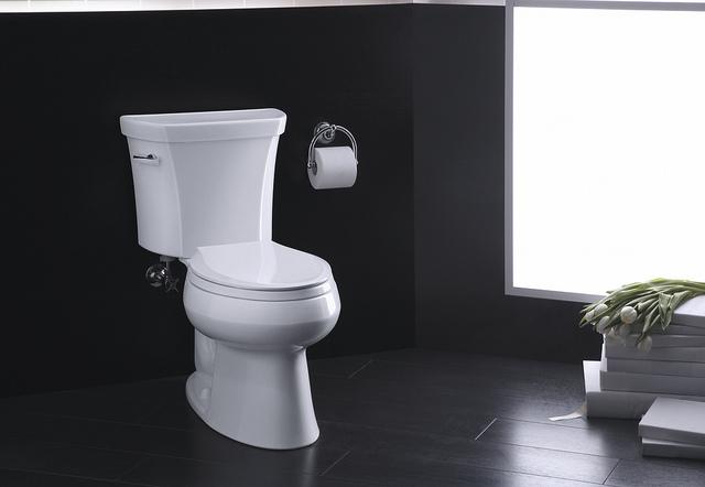kohler wellworth el 2 pc toilet set