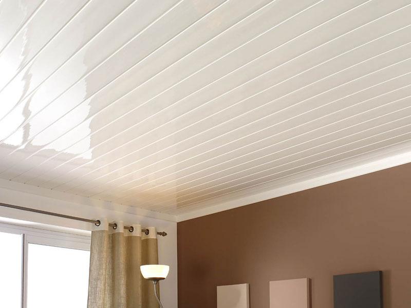 Home Interior False Ceiling Types